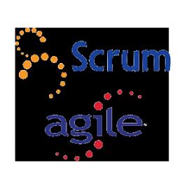 formation scrum logo