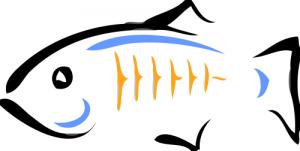 formation glassfish logo