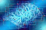 cerveau-technologies