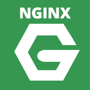formation nginx logo