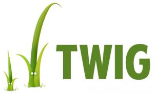 formation twig logo